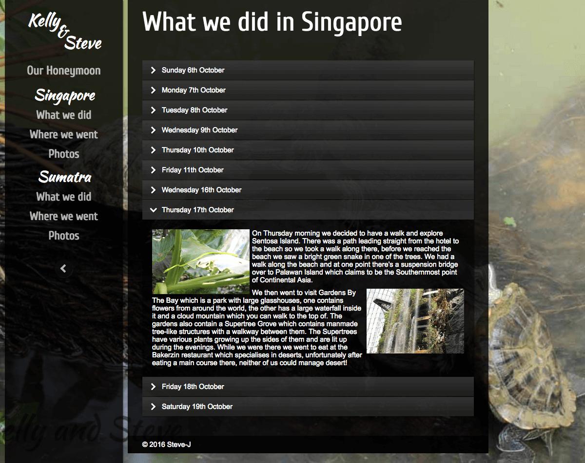 HONEYMOON WEBSITE - WHAT WE DID IN SINGAPORE